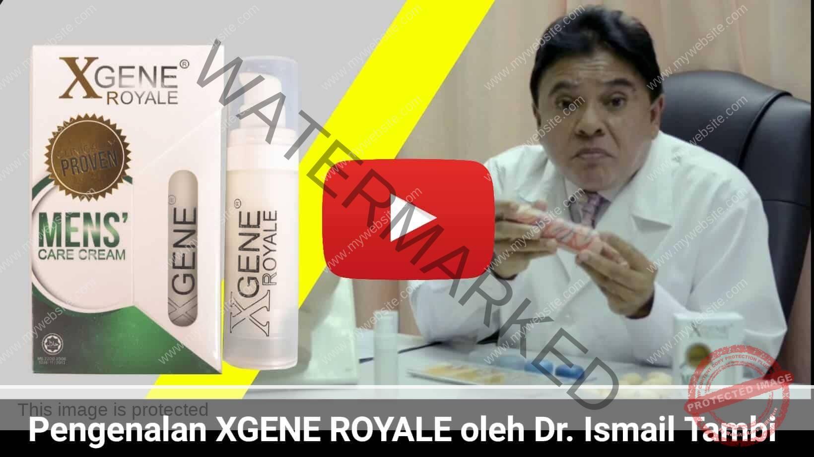 Xgene Royale Youtube