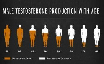 rawatan mati pucuk testosterone level