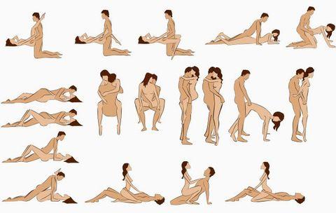 ereksi - posisi