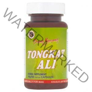Tongkat Ali - Orang Kampung Tongkat Ali