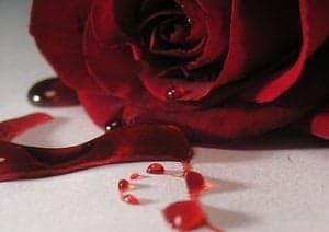 berdarah pada malam pertama